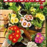 Bauhaus katalog - Začetki na vrtu